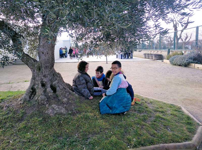 Criaturas jugando bajo un olivo en el patio de la escuela