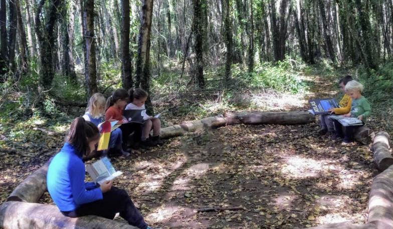 Niños sentados en círculo en medio del bosque
