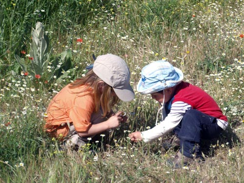 Un niño y una niña observan las flores