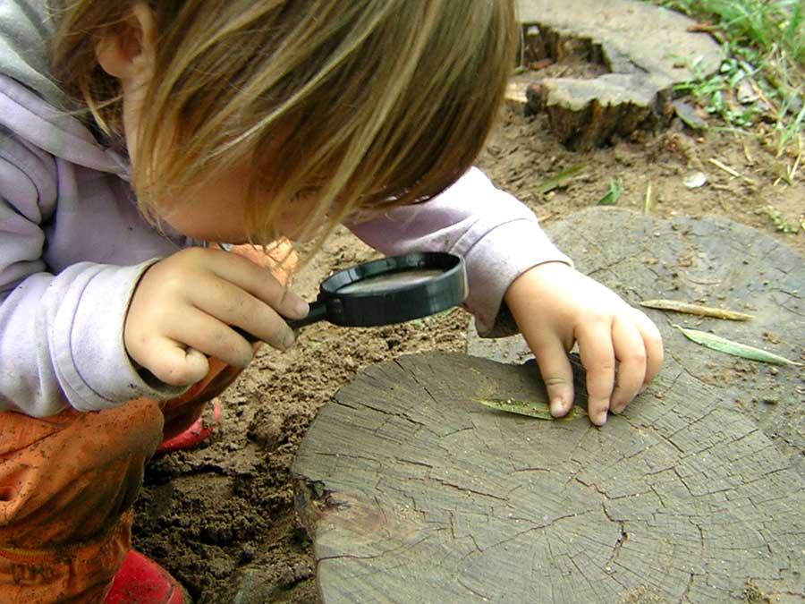 Una niña observa un insecto con una lupa
