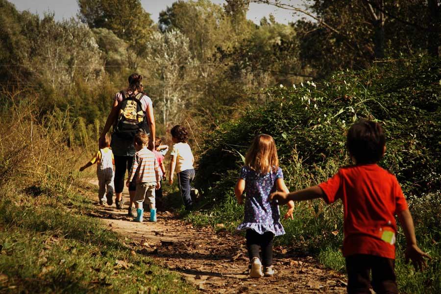 Niños de excursión por un camino